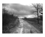 Gravel Journey BW Photographic Print by Brian O'rourke