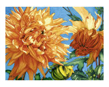 Sunlit Dahlias Giclee Print by Jolly Kornicks