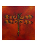 Dragonfly Michan Giclee Print by Sheryl Bunnage