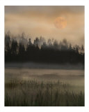 Misty Moonscape Photographic Print by Sari Mcnamee