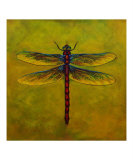 Dragonfly Lexie Giclee Print by Sheryl Bunnage