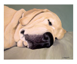 A Head Pillow Is Nice Giclee Print by Amy Reges