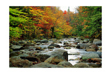 Autumn Colors, Lost River, New Hampshire Photographic Print by George Oze