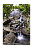 La Coca Waterfall, Puerto Rico Photographic Print by George Oze