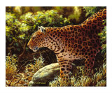 On The Prowl Giclee Print by Crista Forest