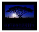 Opportunity Motivational Reprodukcja zdjęcia autor Neil Bramley