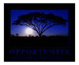 Opportunity Motivational Photographic Print by Neil Bramley