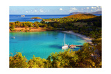 Salomon Bay, Saint John, US Virgin Islands Photographic Print by George Oze