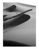 S Shadow in the Sand Photographic Print by Donna Corless