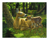 First Spring Giclee Print by Crista Forest