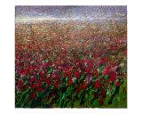 Flower field Giclee Print by Mario Zampedroni
