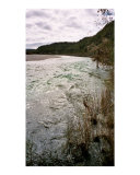 Flooding River Fotodruck von A Villaronga