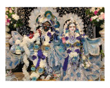 Deities in Blue - Radha and Krishna Photographic Print by Mallika Dasi