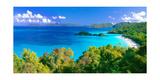 Panoramic View of Trunk Bay, St. John, USVI Impressão fotográfica por George Oze