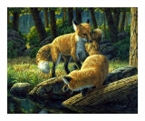 Sibling Rivalry Giclee Print by Crista Forest