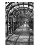 Walking Archway Photographic Print by Donna Corless