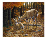 Autumn Innocence 2 Giclee Print by Crista Forest