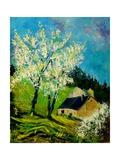 Blooming Prune Trees Posters por  Ledent