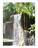 Tropical Waterfall Photographic Print by Pauline Skipper