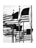 Flags 2 Photographic Print by John Gusky