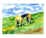 Breezy Buckskins Giclee Print by Donna Ridgway