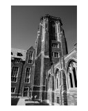 Tower at Cornell University Photographic Print by Nicole Bivins