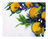 Janets Oranges 1 Giclee Print by Ann Tuck