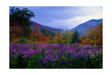 Fall Meadow at Twilight Photographic Print by George Oze