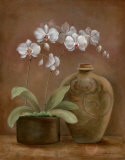 Orchid Antiquity I Prints by Jane Tava