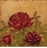 Field Peonies Láminas por Edward Raymes
