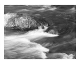 bearcreek Photographic Print by Jason Poland