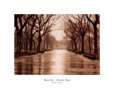 Rainy Day, Central Park Prints by Sergei Beliakov