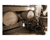Pinot and Refrosco Barrels Photographic Print by Donna Corless