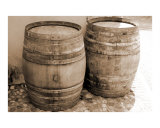 Two Wine Barrels Photographic Print by Donna Corless