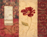Peony Montage Art by Carol Robinson