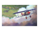 Albatros D-Vs Climbing over Airfield Giclee Print by jack connelly
