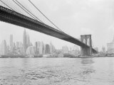 Brooklyn Bridge and Lower Manhattan, New York, New York Photographic Print by Tony Camerano