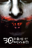 30 días de oscuridad|30 Days of Night Pósters