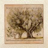Juste le Chant des Cigales Posters by Pascal Cessou