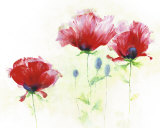Red Poppies II Poster by Andrea Fontana