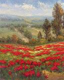 Poppy Vista II Art by  Hulsey