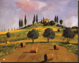 Tuscan Hillside Stretched Canvas Print by Judith D'Agostino