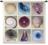 Shell Collection Wall Tapestry by Robert Mertens