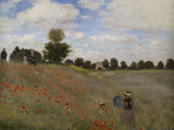Poppies, c.1873 Giclee Print by Claude Monet