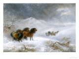 Welsh Ponies in the Snow Giclee Print by James Howie Carse