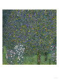 Rose Bushes Under Trees, c.1905 Gicl&#233;e-Druck von Gustav Klimt