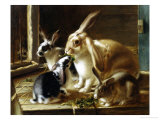 Curious Spectator Giclee Print by Valentine Thomas Garland