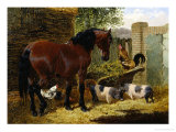 Friendly Farmyard Giclee Print by John Frederick Herring II