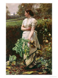 Picking Turnips Reproduction proc&#233;d&#233; gicl&#233;e par Robert Crawford