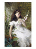 Foxgloves Giclee Print by George Augustus Holmes